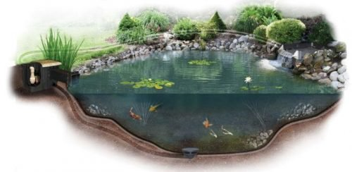 Pond Bacteria Treatment
